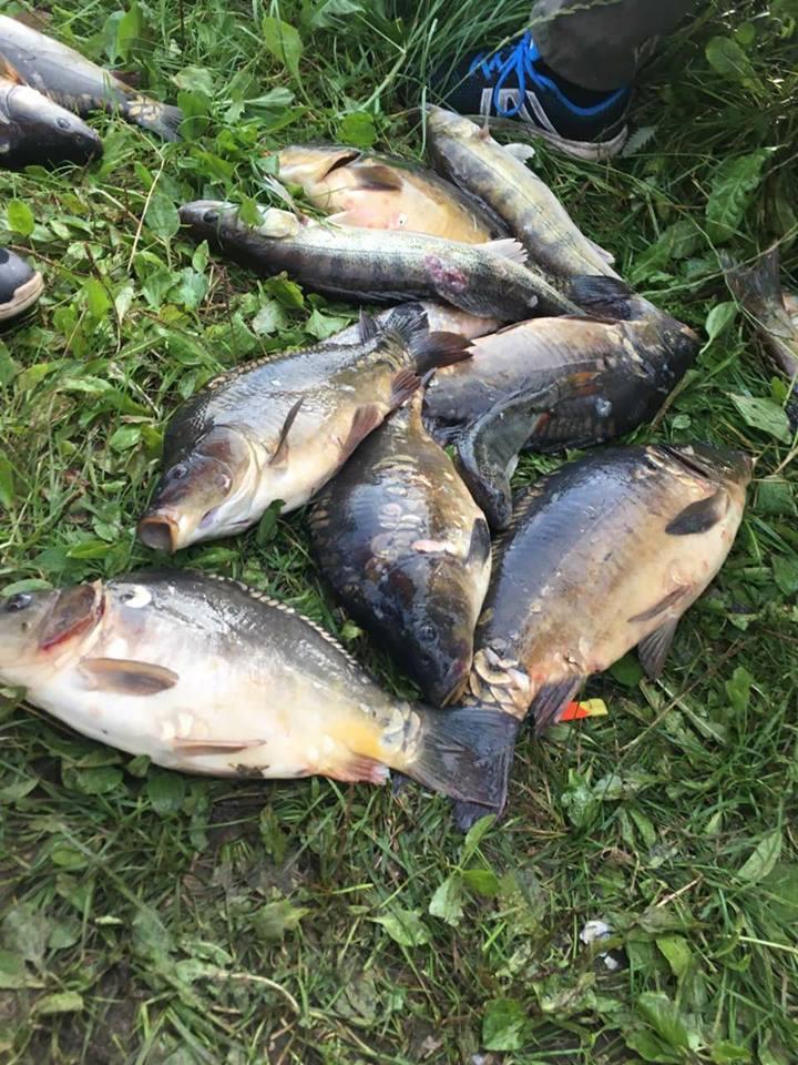 žvejyba vasara