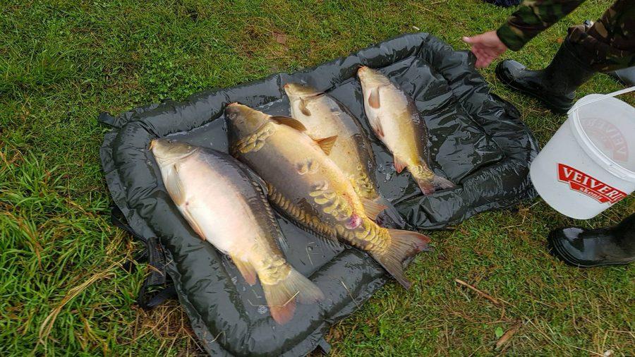 karpių žvejyba